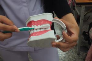 樂齡文創社專題講座-認識牙周病
